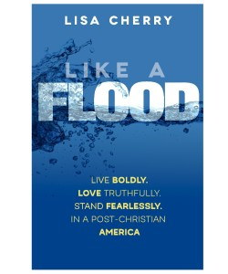Like a flood front cover
